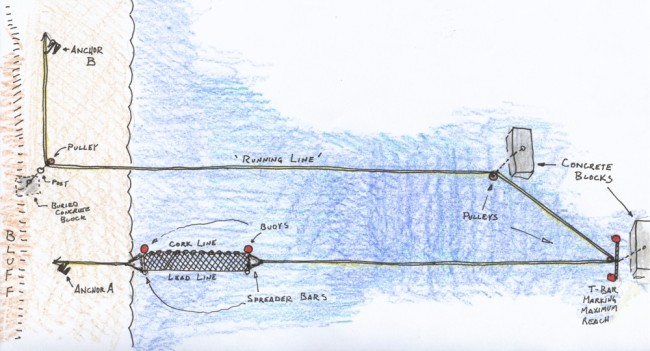 fishsite-diagram
